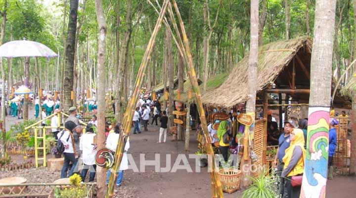 Glenmore Banyuwangi Tawarkan Wisata Kuliner Di Hutan Mahoni